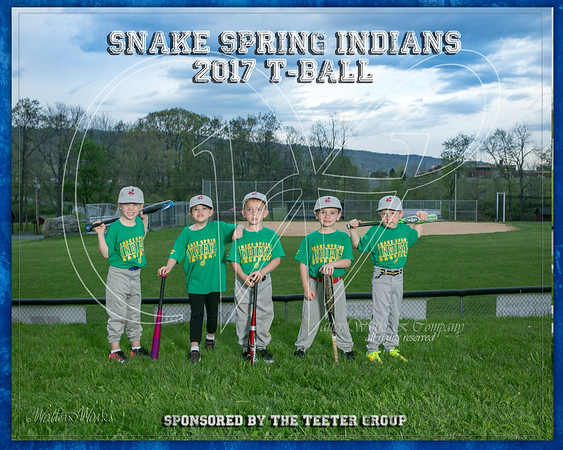 Snake Spring Indians 2017 TBall Taylor