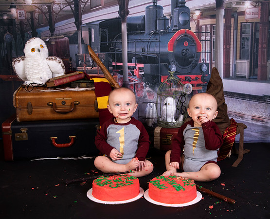 Beau & Colt  (Harry Potter 1 Year Session) 2019