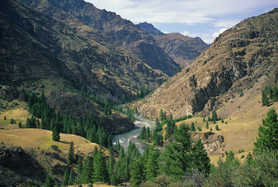 M. F. Salmon River - Lower Canyon