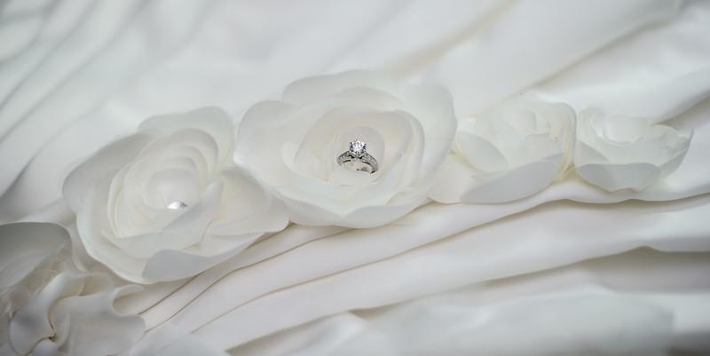 bap_schwarb-wedding_20140906094531_D3S9221