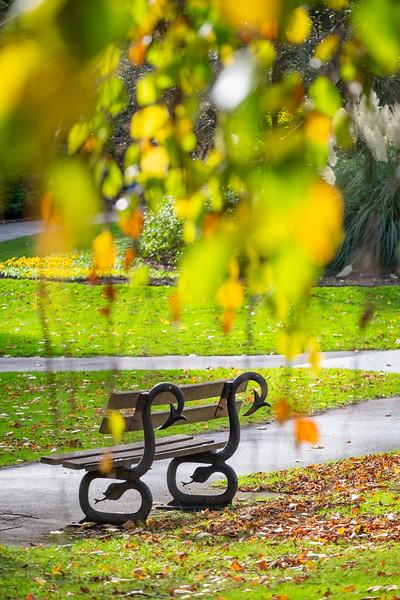Valley Gardens Oct 18-9.jpg