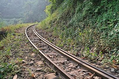 Darjeeling to Siliguri