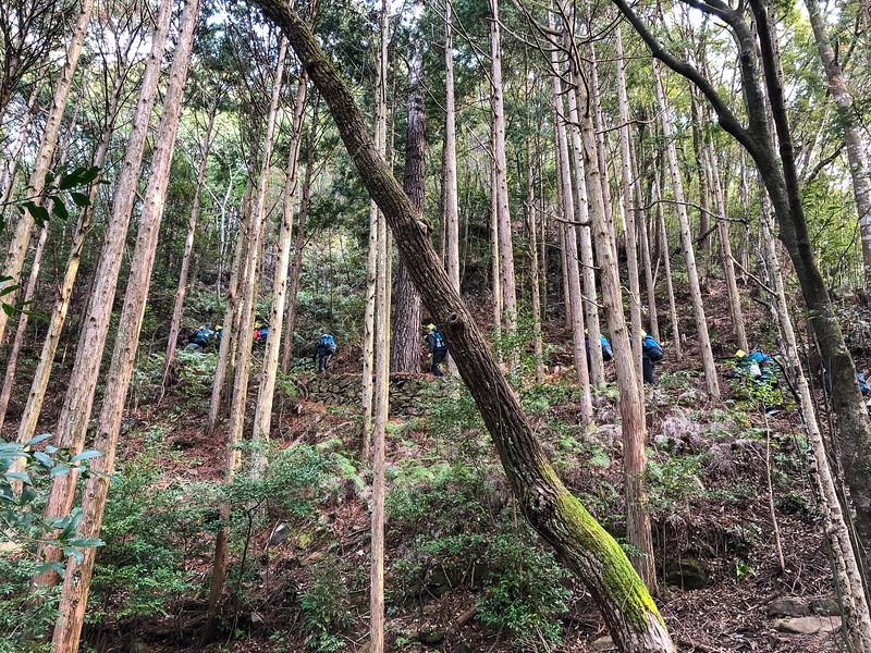 Grade 11 Expedition-Japan on Foot-IMG_0649-2018-19.jpg