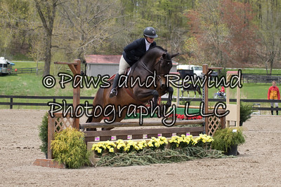 ALL 2'6' HUNTER (LOW/SKIDMORE/USHJA/LOW ADULT)
