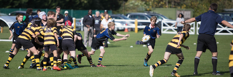 Hertford vs Wasps