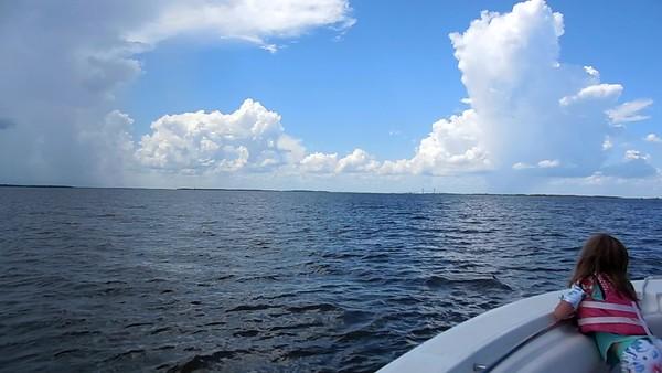 Jekyll Island Boat Tours Dolphin Daze Dolphin Videos 07-27-20