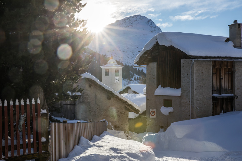 2018-Winter-5470.jpg