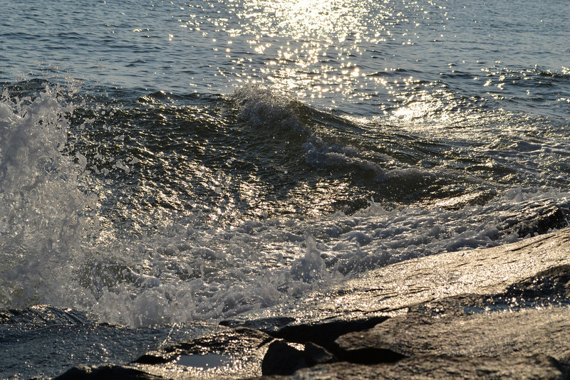 beach 2011 352.JPG