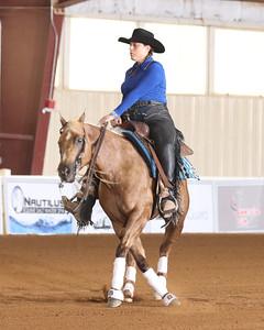 Wed Nov Horse Non Pro
