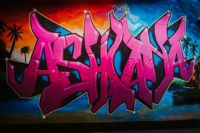 The Ashiana - Screen Res