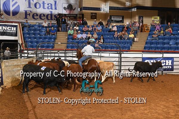Rookie 11- 10HC RSNC Finals 2018 Fort Worth TX