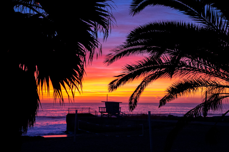 January 2 - Palm tree laden life guard station basking in the second sunset of the year in Los Angeles.jpg