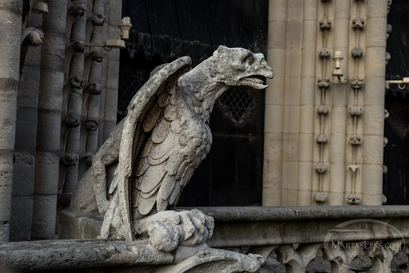 Notre Dame, Paris-21.jpg