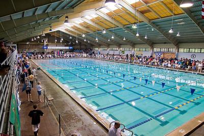 2008 NCSA Jr. Nationals Swimming Orlando-- SELECT worker / coach / swim photos