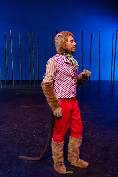 Willows Costumes-2926.jpg