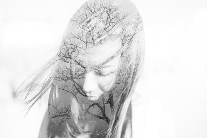 blendtu tree.jpg