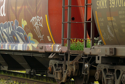 DAY 167 - June 16, 2011 - Even Moving Trains Grow Flowers Cynthia Meyer, Port Edward, British Columbia, Canada