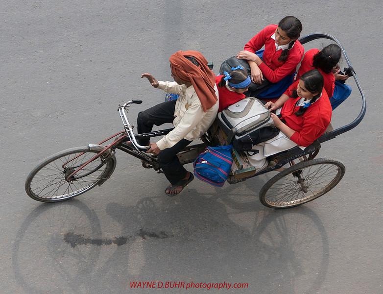 INDIA2010-0128A-404A.jpg