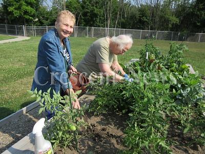 07-31-14 NEWS Senior garden