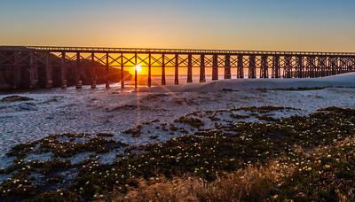 Ft Bragg Sunrises, Sunsets, Wildlife