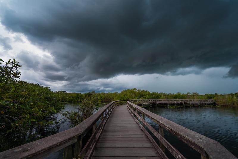 Everglades National Park-1.jpg
