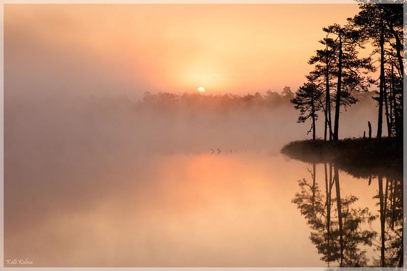 Päikesetõus Meenikunno rabas