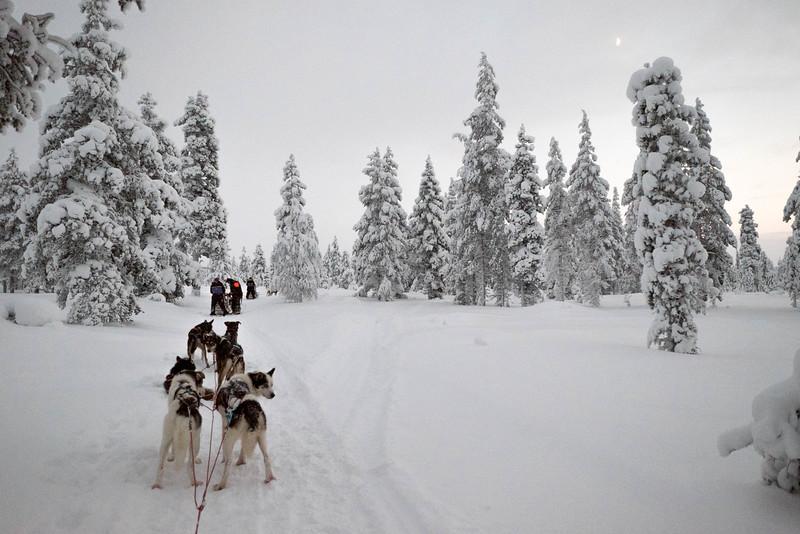 Finland_160116_51.jpg