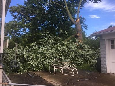 070717 Lorain tree fall
