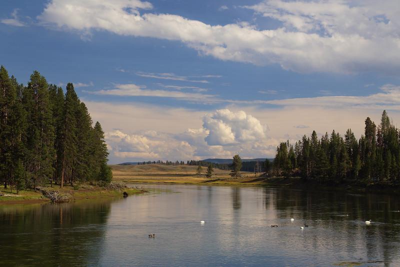 Yellowstone 083.JPG