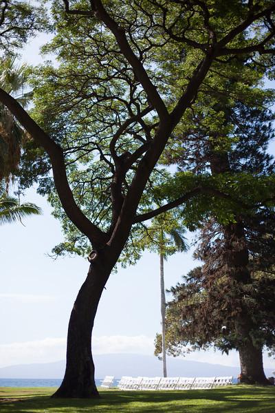 20121025_Wendy_and_Dan_Olowalu_2723.jpg