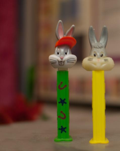 Bunnys for Life