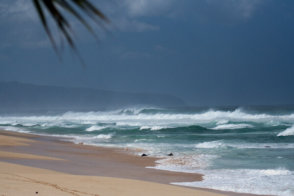 Oahu beach scenes