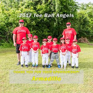 2017 Little League Sponsorship Photos