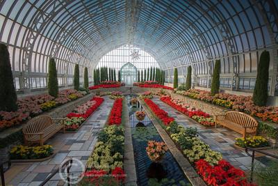 Como Conservatory December, 2009