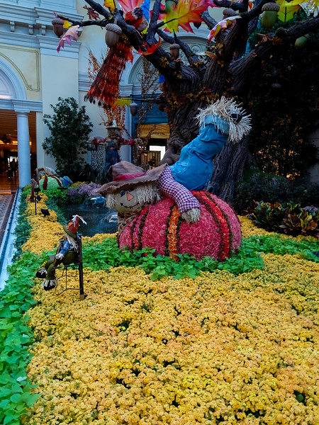 An early morning walk through the bellagio conservatory.  We are up early becuase its day 2 plus the clocks went back last ight.  Had a bite to eat at JP, now killing some time before our reservations at 10:30 at Lago for brunch.