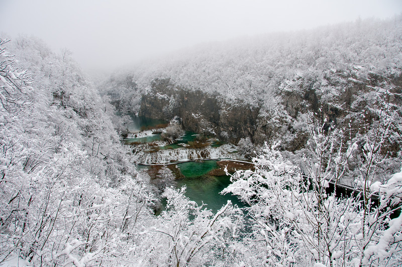 Snow frost covering trees along the lake - Plitvice National Park, Croatia