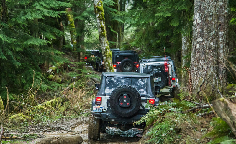 Blackout-jeep-club-elbee-WA-western-Pacific-north-west-PNW-ORV-offroad-Trails-91.jpg