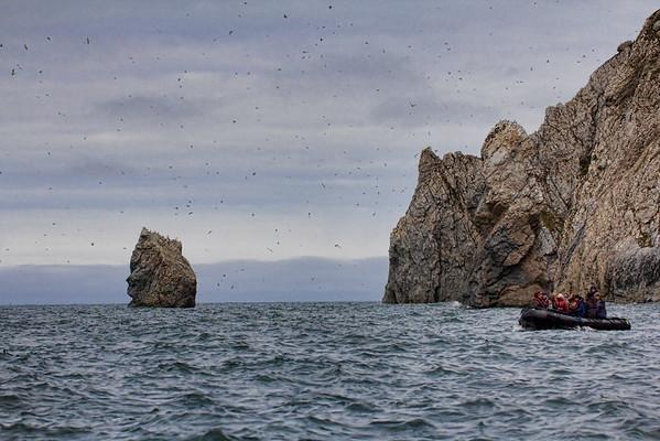 Herald Island