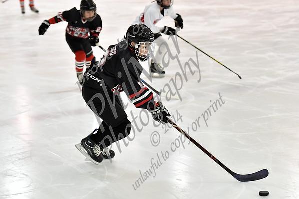 Schuylkill Valley/ Exeter/ Muhlenberg/ Brandywine vs Fleetwwod/Oley/Conrad Weiser Middle School Ice Hockey 2018 - 2019