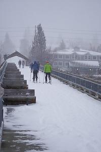 Whatcom Snow