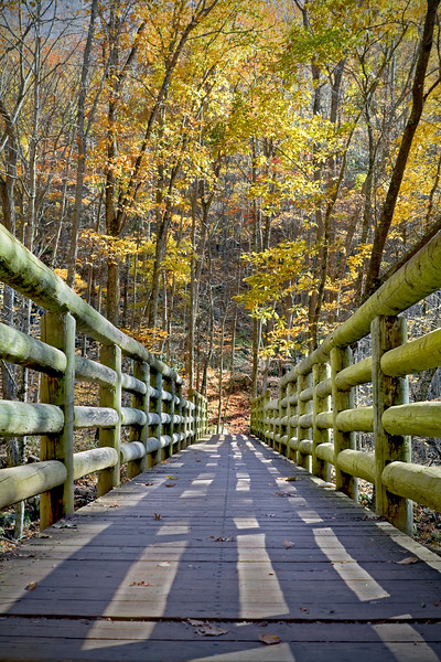 Wooden bridge crossing a creek in the middle of the forest during fall foliage.