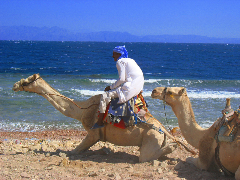 Egypt-625.jpg