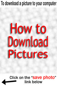 How-to-Download.jpg