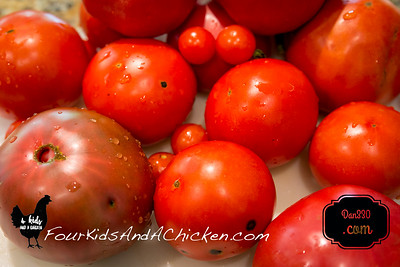 Preserving Roasted tomatoes