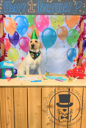 Jackson's 1st birthday!