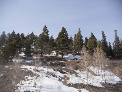 Taos Ratri Drive 2012
