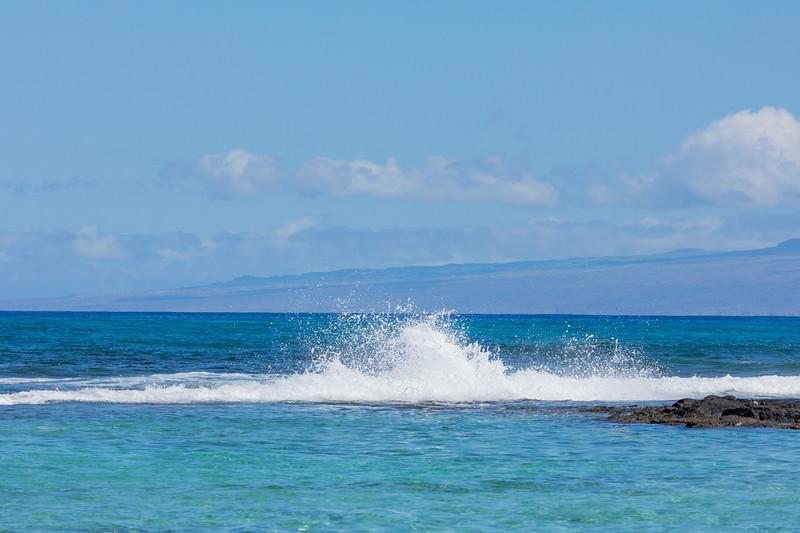 Travel_Hawaii_03062020_0127.jpg