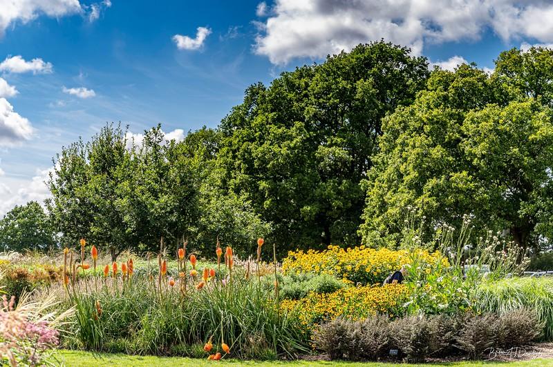 Sussex Prairie Gardens-0296.jpg