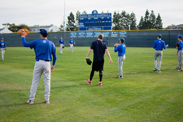 Dolphin Baseball