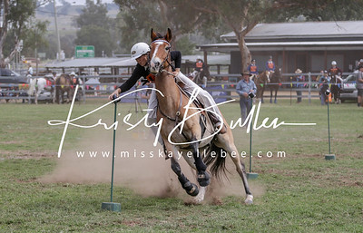 NSW Pony Club State Sporting Champs 2019